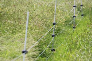 rappa electric fencing