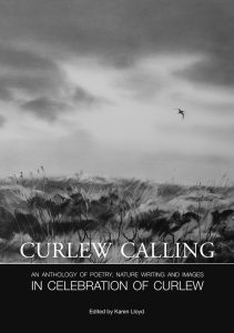 Curlew Calling book cover