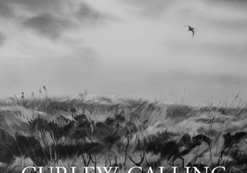 Curlew Calling Anthology – Book Review