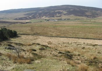 Inspired by Curlew Country – Blog by Jonathan Groom
