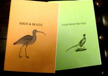 Poetry Books Raising Funds for Curlew Appeal
